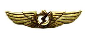 Uçucu ve Muhabere Elektronik İstihbarat ve E/H Subayı Brövesi