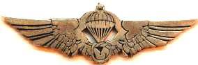 Paraşüt Katlama, Birinci Kademe Bakım ve Kontrol Uzmanı Brövesi